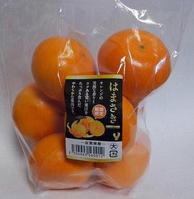 はまさきオレンジ
