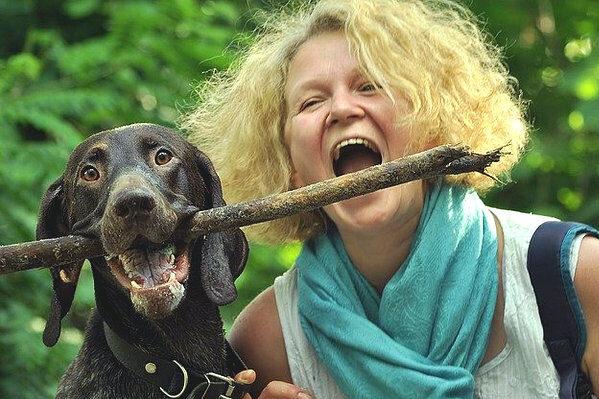 dog-stick
