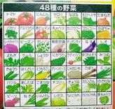 48syu-koiyasai3